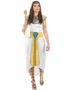 También te gustará : Disfraz de reina egipcia para mujer