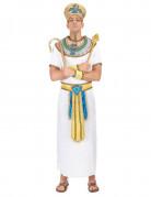 También te gustará : Disfraz de rey egipcio para hombre